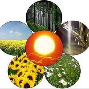 greeneconomy, fondi in arrivo per enti locali