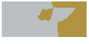 option web logo 3